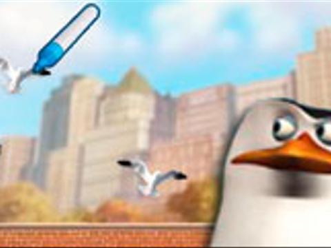 Чайка-захватчик (Пингвины из Мадагаскара (6+))