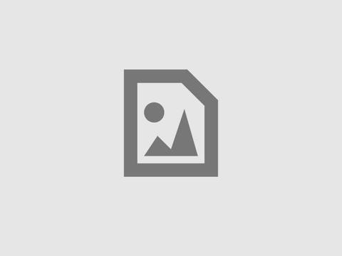 Team Umizoomi : Firetruck