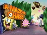 The A-MAZE-ing Chase