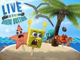 Live From Bikini Bottom!