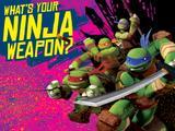 Teenage Mutant Ninja Turtles: What's Your Ninja Weapon?