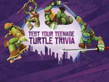 Teenage Mutant Ninja Turtles: Test Your Teenage Turtle Trivia