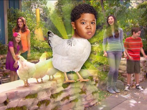 """""""Benjamin the Chicken"""""""