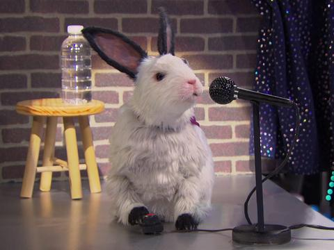 "The Thundermans: ""Dubby Bunny"""