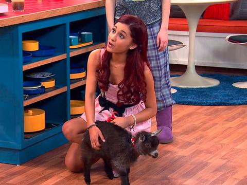 Sam & Cat - #CapraCeaNoua