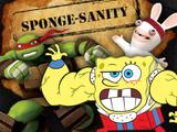 Sponge-Sanity