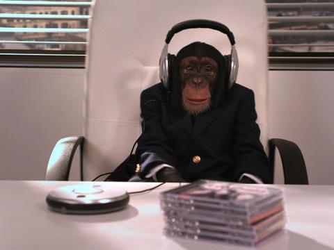 Big Time Rush | Short | Lolo, o Macaco