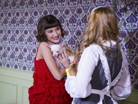 Heidi, Bem-Vinda À Casa | Galerias | Pets no set