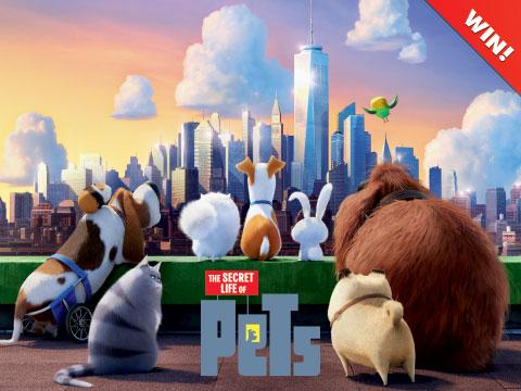 The Secret Life Of Pets Movie Contest