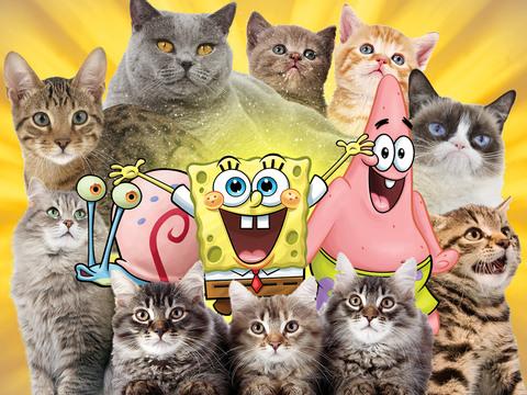 BOB ESPONJA | SHORT | Gary y los gatos
