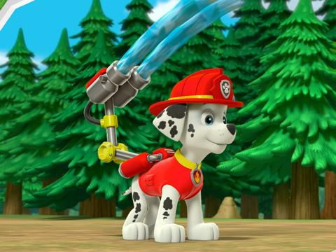 Stay Safe with Paw Patrol: Fire
