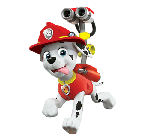 marshall from the firehouse to his fire truck marshall is a dalmatian ...