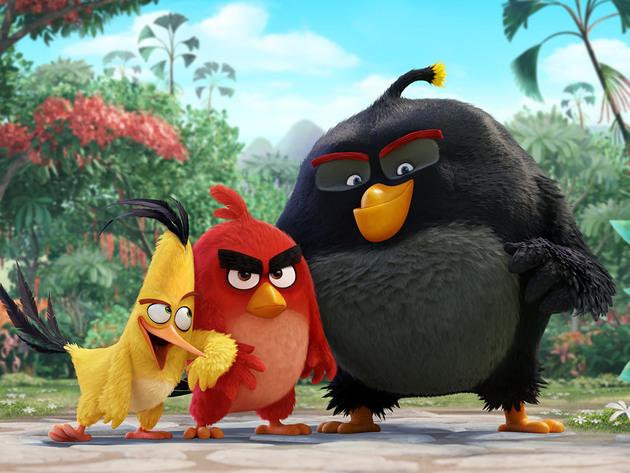 Orange Carpet: Angry Birds