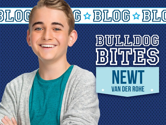 Bulldog Bites: Newt Van Der Rohe