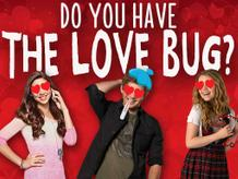 Do You Have The Love Bug?