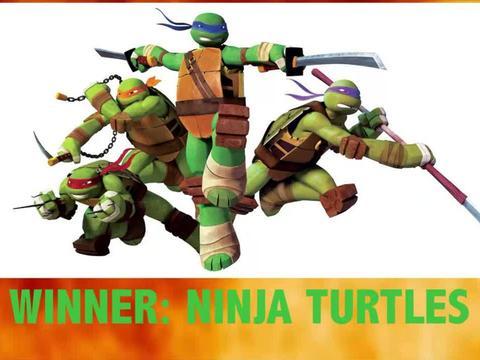 Turtles VS Ninja Turtles