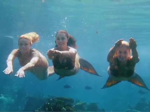 Mako Mermaids!