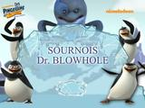 Sournois Dr blowhole