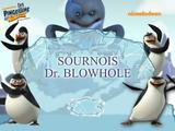 Sournois Dr blowhole