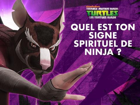 Quel est ton signe spirituel de ninja?