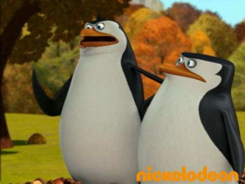 Jackpot de noisettes - Les Pingouins de Madagascar