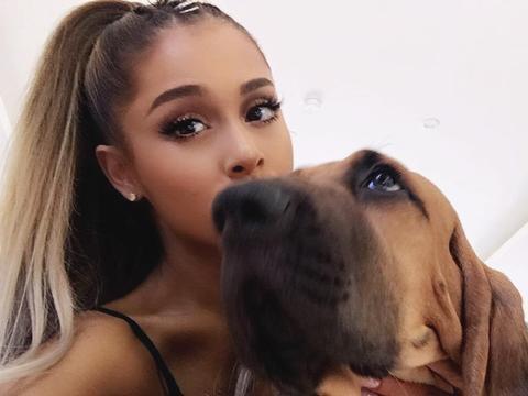 Ariana Grande és kutyusai élvezik a nyarat