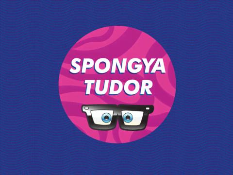 Legyél te a legújabb SpongyaBob-szakértő!