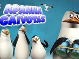 Pinguins de Madagáscar: Apanha Gaivotas