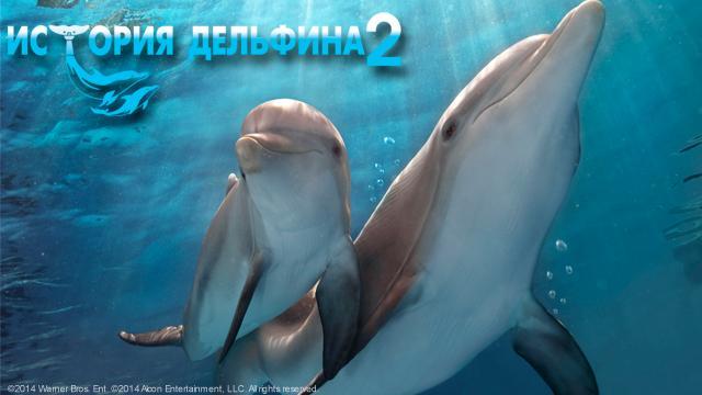 История дельфина-2