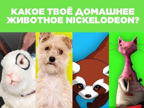 Кто твоё домашнее животное Nickelodeon?