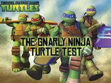 The Gnarly Ninja Turtle Test