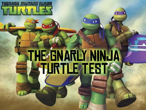 The Gnarly Ninja Turtle Test