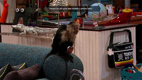 Sam & Cat: La Scimmia di Dice