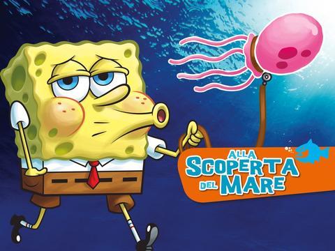 Le meduse sono sorprendenti!
