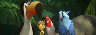 Fly to 'Rio 2' in This Episode of N-View!