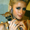 Paris Hilton Signs to Lil' Wayne's Cash Money Record Label
