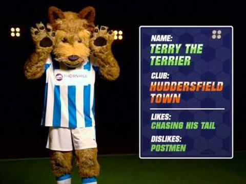 Terry the Terrier