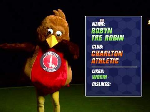 Robyn the Robin