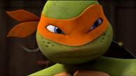 O Treinamento das Tartarugas