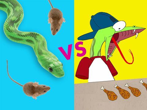 Real Snake vs. Craig