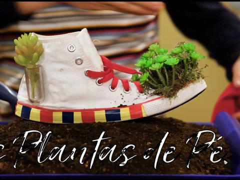 Engenhocas Bobocas | S1 | Episódio 9 | Websérie | Plantas de Pé