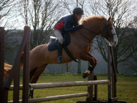 RIDE   SHORT   Clase de equitación de Will