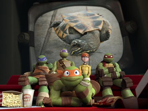 Flip That Turtle!