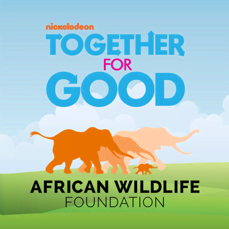 Together For Good Wildlife Special