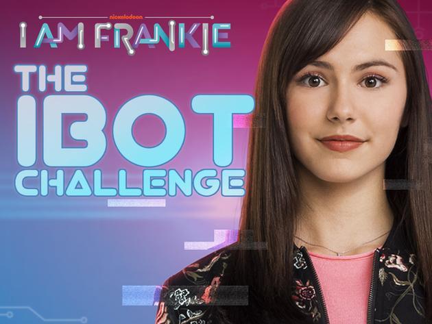 The iBot Challenge
