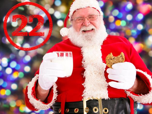 Christmas Survival Guide - Santa's Milk and Cookies Guide