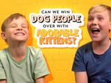 Can we win over dog people with adorable kittens?