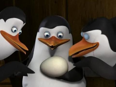 "Pingüinos de Madagascar: ""Huevinstinto Paternal"""