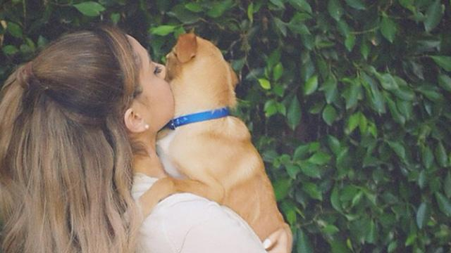 Ariana Grande kutyusa igazi sztár lesz!