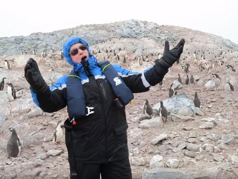 Ez történik, ha operát énekelsz pingvineknek
